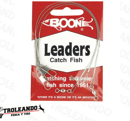 boone-leaders