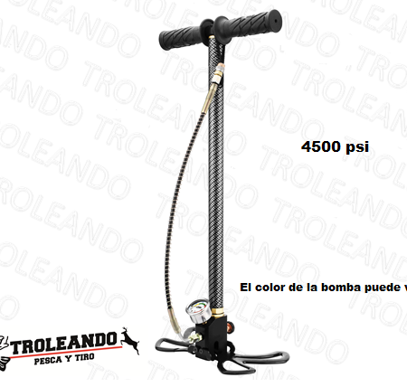 domain-bomba-manual-4500-psi